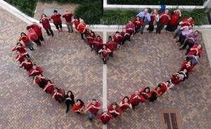 CDL - heart