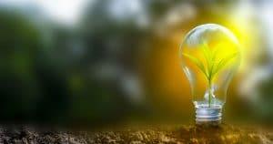 Energy Savings Bulb